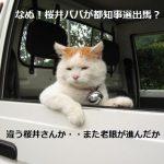 都知事選出馬桜井誠さんが掲げた7つの公約