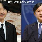 皇太子のズラと秋篠宮殿下のヘアスタイル等々どーでもよいこと