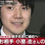 眞子様の婚約者小室圭さん会見と秋篠宮ご夫妻のお気持ち(妄想・破壊モード)