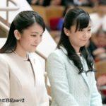眞子さま、佳子さま2人で千葉県の少年少女オーケストラの演奏を鑑賞*ウソをつき脱税と書かれたのでそれなりの対応をします。