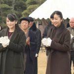 佳子さま初の鴨場接待 眞子さまと姉妹で放鳥